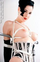 http://img156.imagetwist.com/th/11334/efhq2itsedoe.jpg
